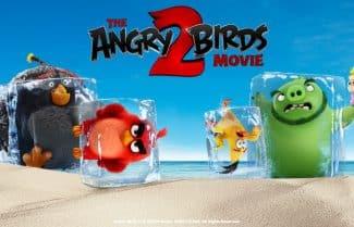 """ביקורת סרט: """"אנגרי בירדס – הסרט 2"""": לחם, בידור ושעשועים, לקטנים ולגדולים"""