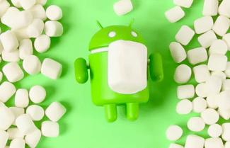 מרשמלו עדיין בפסגה: גוגל מפרסמת את 'עוגת' גירסאות אנדרואיד
