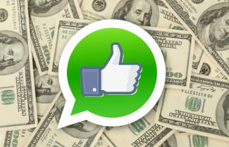 דיווח: פייסבוק תתחיל בשנה הבאה לשלב פרסומות ב-WhatsApp