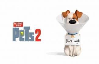 """ג'ירפה בקולנוע: """"החיים הסודיים של חיות המחמד 2"""": משעשע, אבל לא נושך"""