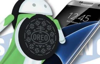 הגיע הזמן: סמסונג החלה בהפצת אנדרואיד 8 למכשירי Galaxy S7