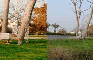 ג'ירפה בודקת: Galaxy S10 Plus מול Huawei P30 Pro – קרב צילומי יום