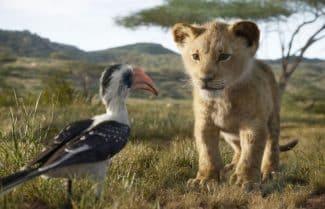 """ביקורת סרט: """"מלך האריות"""": עיבוד מבריק ומופנם"""