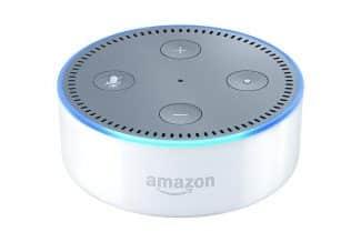 ג'ירפה בודקת: Echo Dot של אמזון