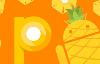 דיווח: גירסת מפתחים ראשונה ל-Android 9 תגיע לקראת אמצע החודש
