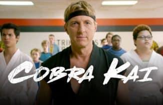 """מתחילה לשחרר תכנים: יוטיוב מאפשרת צפייה חינם בסדרה """"קוברה קאי"""""""