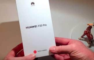 ג'ירפה פותחת קופסה: Huawei P20 Pro