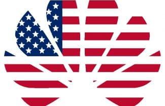 מרימה ידיים: וואווי עוצרת את ניסיונות הכניסה לשוק האמריקאי
