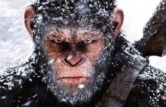 ג'ירפה בקולנוע: ביקורת סרט – 'כוכב הקופים: המלחמה'