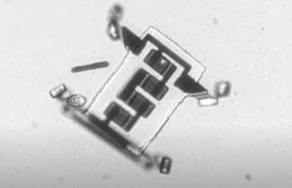 חוקרים פיתחו מיקרו-רובוטים הניתנים להזרקה לתוך גוף האדם