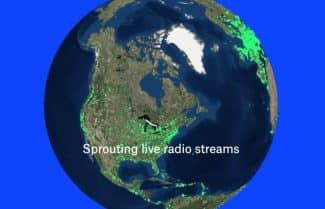 ג'ירפה מאזינה: משוטטים ברחבי הגלובוס עם רדיו עולמי